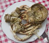 picture of cooked crab  - Dish cooked crab - JPG