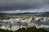 Wellington Cityscape, Nz