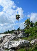 Caribbean beach in Cancun, Mexico