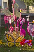 Flamingos, Butterfly And Flowers Display.