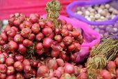 stock photo of red shallot  - Shallot  - JPG