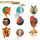 Farm animals avatars