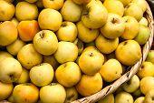 Basket Of Green Apples
