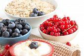 Healthy Breackfast  - Fresh Berries And Naturall Yogurt Or Sour Cream