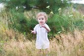 Cute Baby Girl In A White Dress Playing In A Heath Park Among Wild Flowers