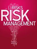 Word Cloud Risk Management