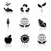 Ecology Icons Set Black