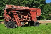 Red Thresher