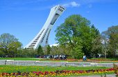 The Montreal Olympic Stadium and tower