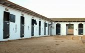 foto of stable horse  - View of modern stables with horses inside - JPG