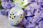Blue hyacinth with Ostern eggs