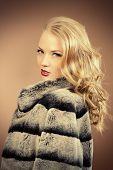 Fashion shot of a beautiful young woman wearing fur coat. Studio shot.