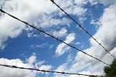 Razer Wire Against Blue Sky