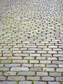 Grey cobblestone pavement