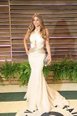 WEST HOLLYWOOD - MAR 2:: Sofia Vergara at the 2014 Vanity Fair Oscar Party on March 2, 2014 in West Hollywood, California