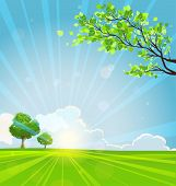 Summer background with trees and sunbeams. Copy space