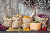 Dried Healing Herbs In Hessian Bags And In Mortar On Wooden Wall Background, Herbal Medicine.