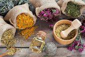 image of essential oil  - Healing herbs in hessian bags wooden mortar with chamomile and essential oil on rustic table herbal medicine - JPG