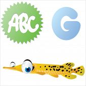 vector isolated cute happy big eyes abc animals: G is for Gar fish