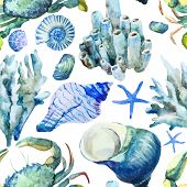 Corals with shells and crabs