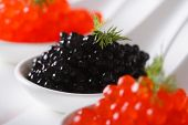 Delicacy Black And Red Caviar Macro In White Spoons. Horizontal