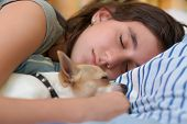pic of toy dogs  - Pretty girl sleeping with her small chihuahua dog - JPG
