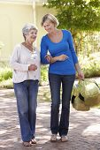 image of grown up  - Woman Helping Senior Female With Shopping - JPG