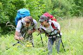 pic of vegetation  - Backpackers on hiking journey looking at vegetation - JPG