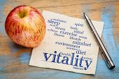 vitality and vital energy word cloud - handwriting on a napkin with a fresh apple poster