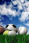 Постер, плакат: Спортивные мячи на траве