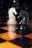 Black And White Chess Horses