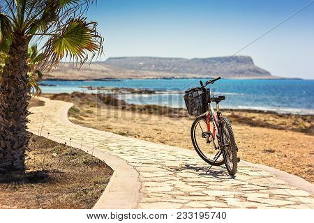 Parked Mountain Bike On Bicycle