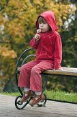 Child With Dandelion Sitting On Bench