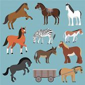 Horse Vector Animal Of Horse-breeding Or Equestrian And Horsey Or Equine Stallion Illustration Anima poster