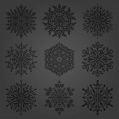 Set Of Vector Snowflakes. Fine Winter Ornaments. Snowflakes Collection. Snowflakes For Backgrounds A poster