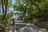 Trail To N Tower At Namsan Mountain In A Sunny Day In Spring.  N Tower, Commonly Known As Namsan Tow poster
