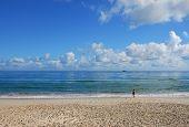 Lone Walker On A Beach In Australia