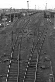 Railway Octopus. Black And White