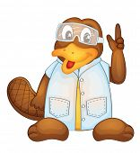 image of platypus  - Illustration of a platypus wearing a lab coat  - JPG