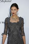ANTIBES  - MAY 24: Bianca Balti at the 2012 amfAR's Cinema Against AIDS at Hotel Du Cap on May 24, 2