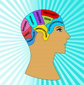 Perfil masculino com seções do cérebro