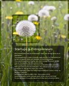 Sample Information Sheet For Entrepreneurs With Dandelion