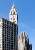 Chicago Tribune Tower And Wrigley Building