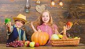 Family Farm. Siblings Having Fun. Children Presenting Farm Harvest Wooden Background. Farm Market. K poster