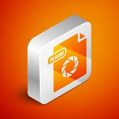 Isometric Raw File Document. Download Raw Button Icon Isolated On Orange Background. Raw File Symbol poster