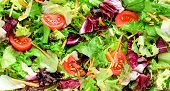 Fresh Salad Mix Leaves Frisee, Radicchio, Iceberg Lettuce, Lollo Rosso, Tomatoes As Background Or Te poster