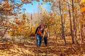Fall Activities. Senior Couple Walking In Autumn Park. Elderly Man And Woman Hugging And Chilling Ou poster
