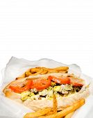 picture of cheesesteak  - A Philly Cheese steak and an order of French Fries - JPG