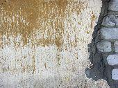 Old Brick Wall 2