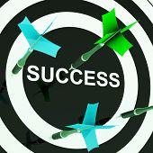Success On Dartboard Shows Unsuccessful Goals